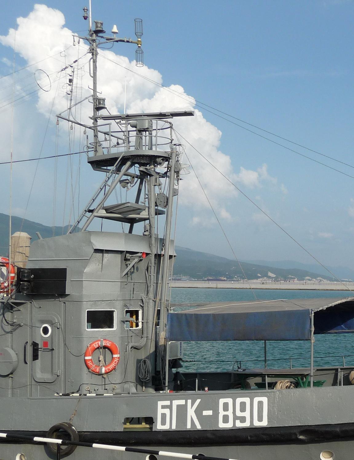 БГК-890 (2).jpg