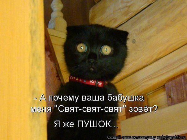 getIрпmageп+.jpg